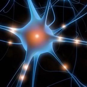 Что такое невропатия и чем она опасна